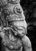Perfil Maya