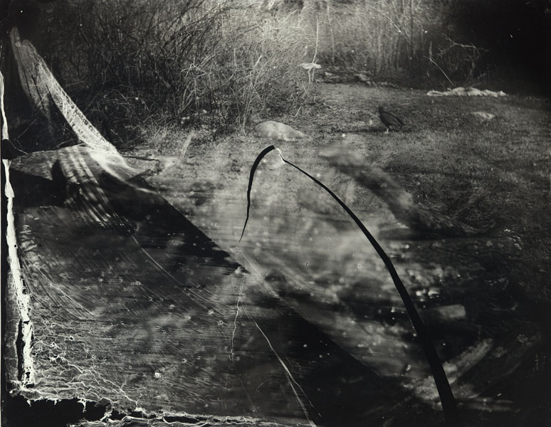 sally_mann_body_farm_bw_12