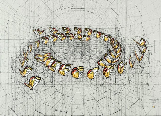 architect-reveals-the-secret-of-natures-beautiful-designs-in-a-hand-drawn-coloring-book-1