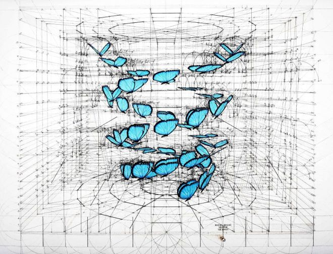 Architect-reveals-the-secret-of-natures-beautiful-designs-in-a-hand-drawn-coloring-book-56fbaed523644__880