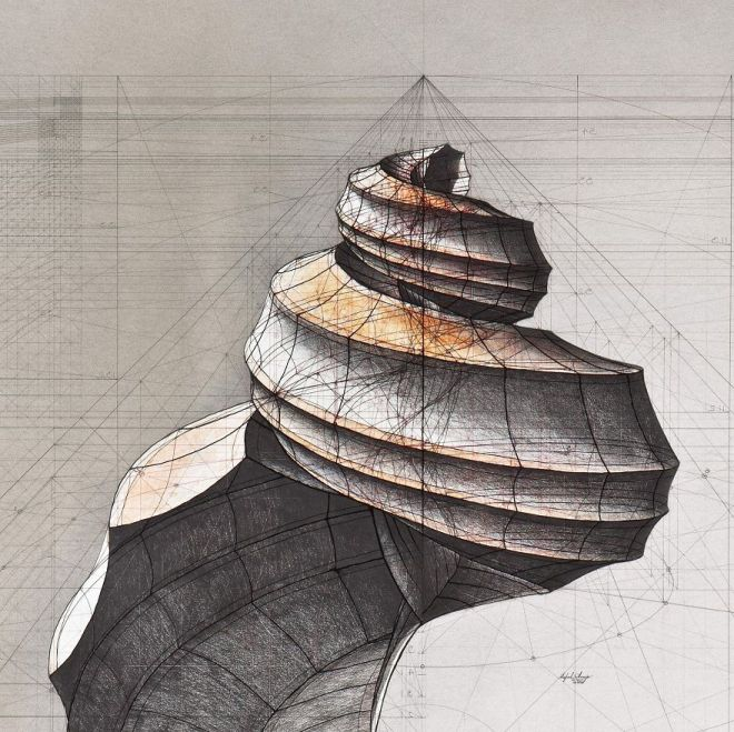 Architect-reveals-the-secret-of-natures-beautiful-designs-in-a-hand-drawn-coloring-book-56fbb5f56733c__880