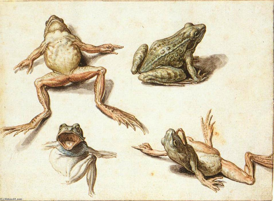 Jacob-De-Ii-Gheyn-Four-Studies-of-Frogs-2-